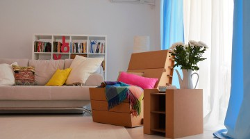 Mobilier cool, din carton, Made in RO
